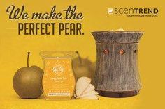 "Scentsy SCENTREND Bar- ""Simply Nashi Pear"" combines the sweetness of a pear with the mouthwatering crispness of an apple, creating a well-balanced note of juicy sweetness."