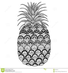 Line Art Design Of Pineapple For Coloring Book For Adult, Logo, T Shirt Design, Flyer, Tattoo And So On Stock Vector - Image: 66978614