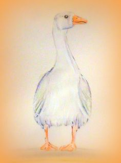 Tyson the goose; water colour