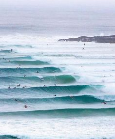 Surf life, best life