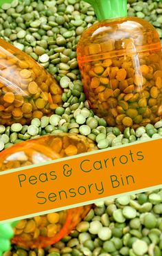 Peas and Carrots Sensory Bin...fun play activity for toddlers.