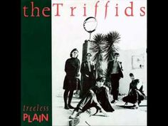 ▶ The Triffids - Wide Open Road - YouTube