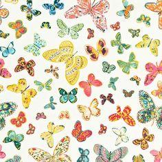 Schumacher Butterfly