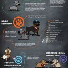 dogs-