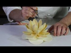 Viria, Homemade Chocolate, Floral, Flowers, Youtube, Sweets, Cake, Pastries, Royal Icing Flowers