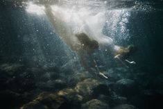 Dreamscapes by Marta Bevacqua | searching my ring des Niebelungen