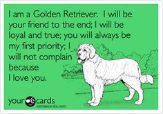 I am a Golden Retriever. I will be your friend to the end; I will be loyal and true; you will always be my first priority; I will not complain because I love you.