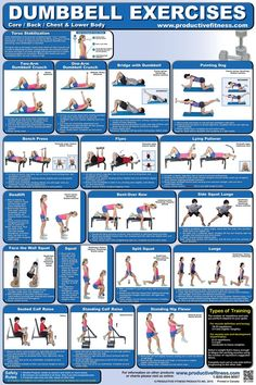 Full body dumbbell workout routine at home pdf