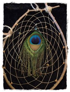 natural dreamcatchers | Peacock Feather Natural Dream Catcher by PinkCoyoteDreams on Etsy