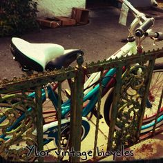 Photography and bikes, two of my fave hobbies! -photo by Cindy