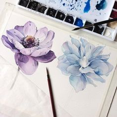 Stunning watercolor artwork of charming flowers Painting & Drawing, Watercolour Painting, Watercolor Flowers, Watercolors, Watercolor Artists, Painting Lessons, Illustration Blume, Watercolor Illustration, Art Aquarelle