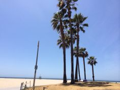 Venice Beach, Los Angeles in Los Angeles, CA