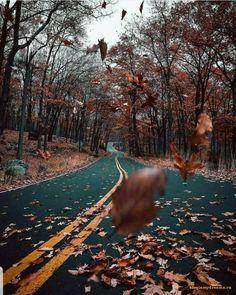 Порно фото природа viewtopic p