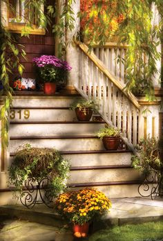 Porch - Westifeld Nj - Livin It Up With Nature Fine Art Print