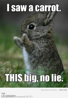I swear it was this big!!! How cute is this :)