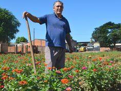 Ele transformou um terreno baldio em um lindo jardim de flores em Rondônia