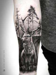 Deer Forest Realistic Tattoo Schwarz und Grau Joel Meyer - Tattoos Ärmel - Deer Forest Realistic Tattoo Black and Grey Joel Meyer – tattoos sleeve Deer Forest Realistic Tattoo Schwarz und Grau Joel Meyer Wolf Tattoos, Antler Tattoos, Stag Tattoo, Elephant Tattoos, Animal Tattoos, Black Tattoos, Tattoo Black And Grey, Deer Hunting Tattoos, Tattoo Ink