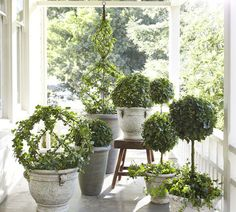 Welcome spring! Get back to a natural state and adorn your entry with lush greenery. Topiaries are just one great way to get this look. Pottery Barn