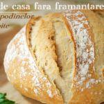 Ciocolata de Casă – Rețetă Originală | La Taifas Bread, Food, Adrenal Cortex, Easy Recipes, Cooking, Brot, Essen, Baking, Meals