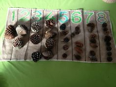 Math with natural materials - Naturally Learning ≈≈ http://www.pinterest.com/kinderooacademy/math-numbers-shapes-patterns/