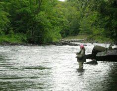 Fly Fishing - Salmon River NY : Lindsay Agness