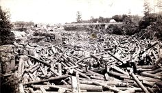 Log Jam on St. Croix River in 1886..i was here about a month ago (2012) listening to the river crack and hearing bubbles from underneath it's frozen surface..again, amazing
