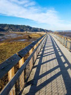 Nisqually National Wildlife Refuge, Washington state