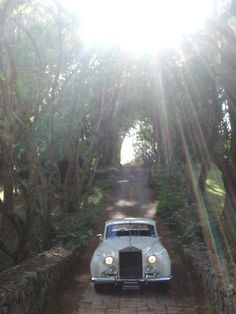 White light with 'Lily' our Rolls-Royce Silver Cloud available for hire.