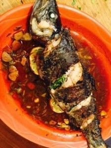 Portuguese Garlic Vinegar Sauce (aka Molho Frito or Molho Vilão) served over fresh caught trout.This is a traditional sauce from the Azores islands of Portugal that is served over fried fish and often boiled potatoes on the side.