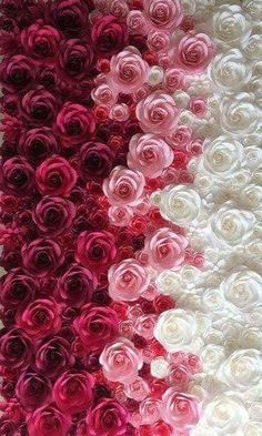 Colorful Flower Wall For Wedding Photography Backdrop Large Paper Flowers Paper Flower Backdrop Giant Paper Flower Phone Wallpaper, Cute Wallpaper Backgrounds, Flower Backgrounds, Colorful Wallpaper, Cellphone Wallpaper, Flower Wallpaper, Nature Wallpaper, Iphone Wallpaper, White Roses Wallpaper