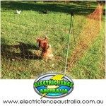 thunderbird-poultry-electric-fence-netting