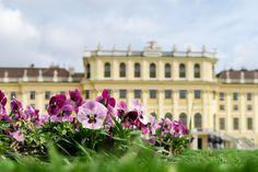 MissClaire - Vienna http://www.missclaire.it/travel/vienna-ancora-tu-22/