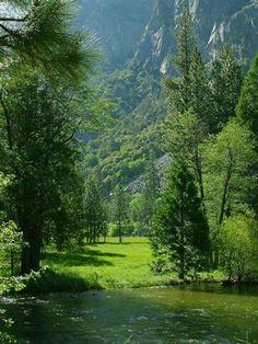 Sequoia National Park, Sierra Nevada East of Visalia,  California