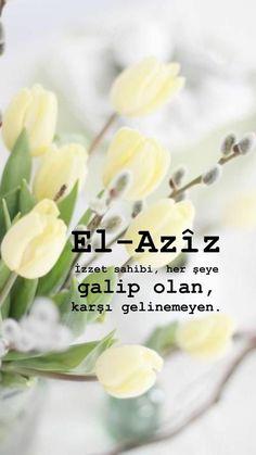 Allah Islam, Argo, My Images, The Secret, Allah