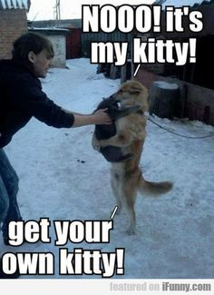 Nooo! It's My Kitty. Get Your Own Kitty.