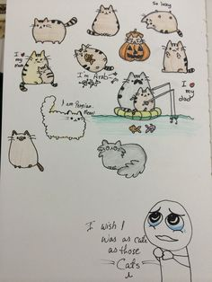 Pusheen cat