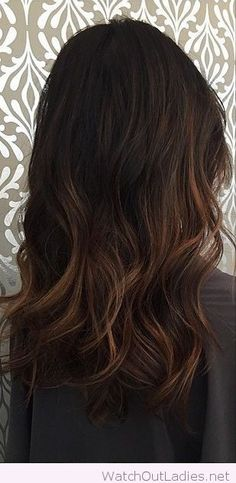 Lovely chocolate brown baylage