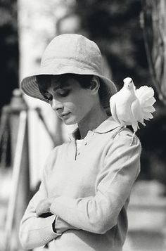 audrey and pidgeon