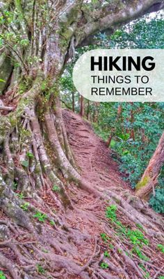 Hiking tips for beginners: things to remember. Day hikes at national parks, local hikes. Mountains or easier hiking trails, be prepared! Hiking gear, outfit, shoes, water, food, snacks, nature with forests and waterfalls, hiking in hot weather! Items to put on your hiking packing list for your backpack that includes essential hiking gear. Lots of hiking trails that are outdoor travel destinations and when you're on a road trip on a budget during summer vacation adventures! #hiking #backpacking
