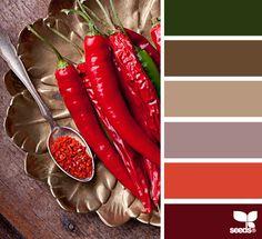 chili color