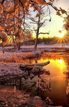 This should be observed on all nature walks Winter Sunset, Winter Scenery, Nature Pictures, Cool Pictures, Beautiful Pictures, Beautiful Paintings, Beautiful Landscapes, Landscape Photography, Nature Photography
