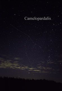 Camelopardalis - Wikipedia, the free encyclopedia