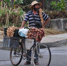 Cuban garlic & onion vender