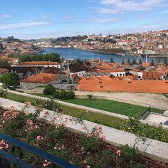Ó Porto  #riodouro #portugal by ioneomena