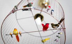 O décor deste apartamento romeno não segue um esquema. O charme está no conjunto de vários detalhes que encantam #lights #birds #decor