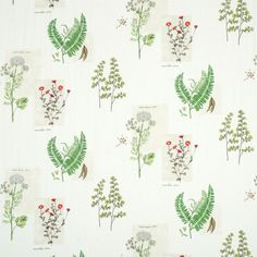 Sanderson - Traditional to contemporary, high quality designer fabrics and wallpapers | Products | British/UK Fabric and Wallpapers | Parchment Flowers (DPFPPF201) | Parchment Flowers