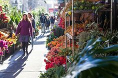 Sun is shining in NYC's flower district
