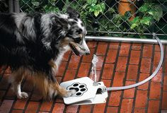 This is a great idea for pet's that are outdoors a lot. Same idea of human water fountains that you have to step on. It's hooked up to your hose. Very cool....literally.