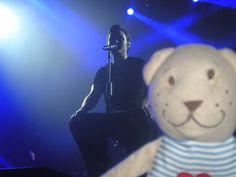 Teddy Bear and Tiziano Ferro
