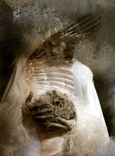 Bird Madonna  Elena Ray